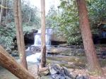 Area around Bad Branch Falls